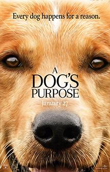 Poster de: A Dog's Purpose