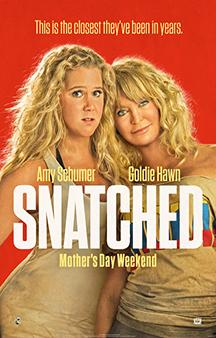 Poster de: Snatched